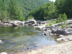 Le Tarn et la Vérié ( no-kill )