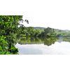 Canal latéral Moselle (Carpe de nuit )