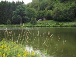 Etang du Maerel à Oderen